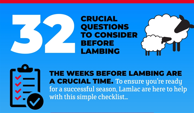 32 key points to help you prepare for a successful lambing season