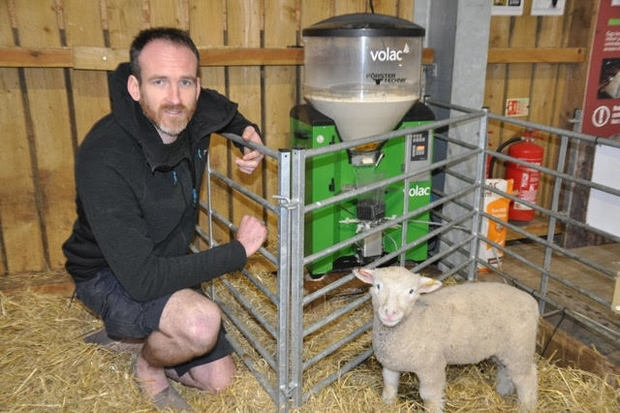 Rearing lambs in the public eye