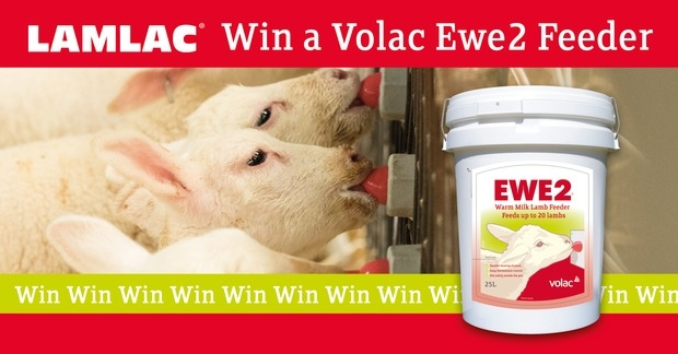 Win a EWE 2 Feeder with Lamlac