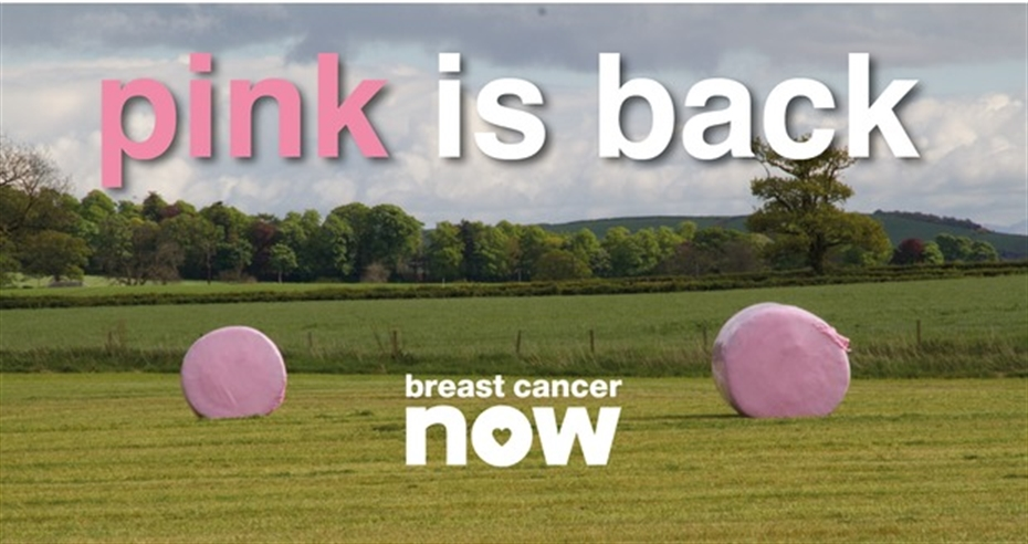 Wrap it pink this season for breast cancer research